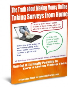 survey-ebook-cover