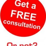 Freelance Writers: Should You Charge for Consultations?
